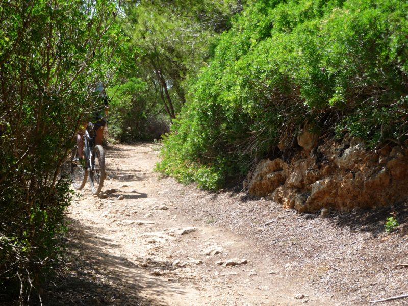 Camino de Binigaus a Cala Escorxada