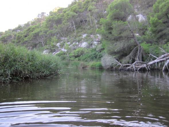 Río de Trebalúger