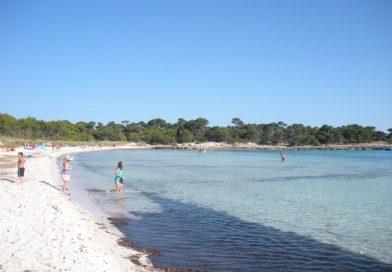 Son Saura Beaches