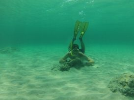 Snorkel en Menorca
