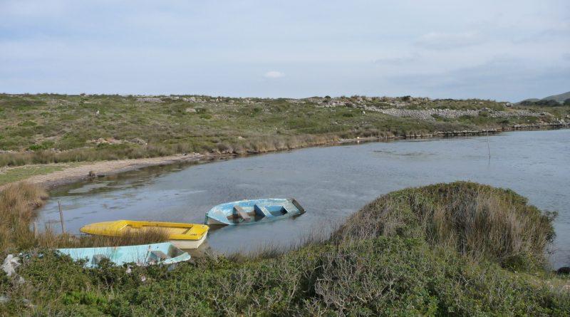 Barcas de madera en el Puerto Sa Nitja