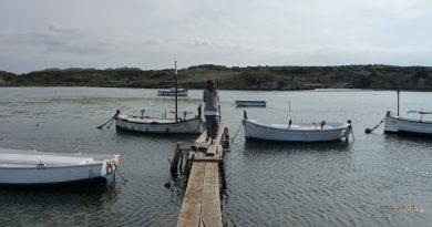 Muelle del Puerto Sa Nitja