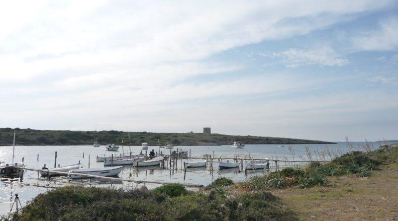 Puerto Sa Nitja y Torre de Sanitja al fondo