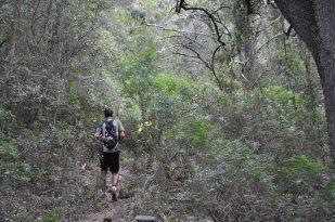 Ruta hacia el Barranc d-Algendar