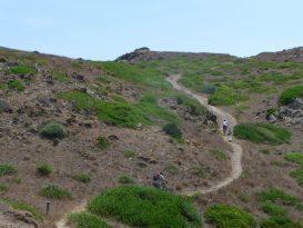 Ciclistas en el camino de vuelta de Sa Torreta a Es Grau