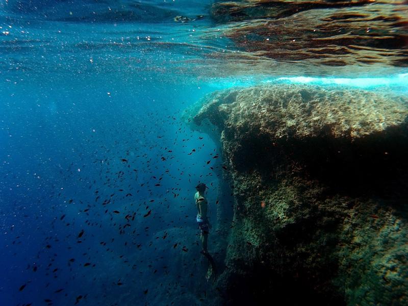 Snorkel con Faralmar