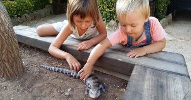 Las 10 mejores Actividades con Niños en Menorca