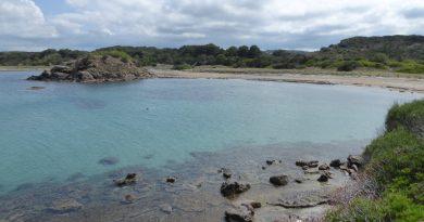 1 Bañista en la Playa de Es Grau - P1020564
