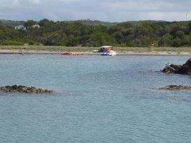 Alquiler de Kayaks y Patines en Es Grau - P1020573