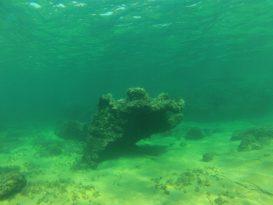 Rocas-del-fondo-de-Cala-Selisabet