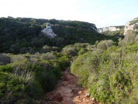 Camino de Acceso a Biniparratx