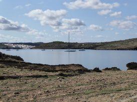 Velero fondeado visto desde Arenal d'en Moro - P1040561