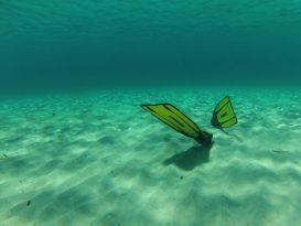 Aletas de Snorkel Cressi